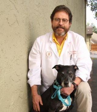 Dr Kevin Gibbs